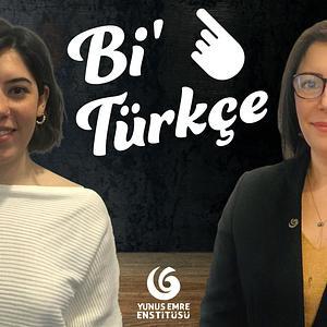 Bi' Türkçe - Türkisch für Jedermann! Cover